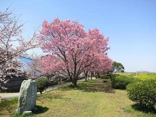 陽光の産みの親、故高岡正明氏の生誕100周年を記念して建てられた石碑