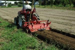 トラクターで盛り土をする